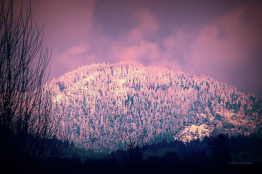Late Mountain Winter Day by Mick Anderson