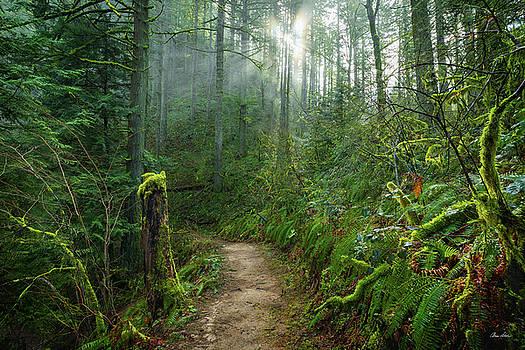 Chris Steele - Latourell Trail