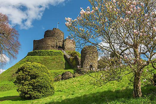 David Ross - Launceston Castle, Cornwall