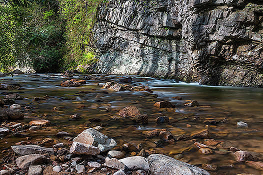 Laurel Fork in Spring I by Jeff Severson