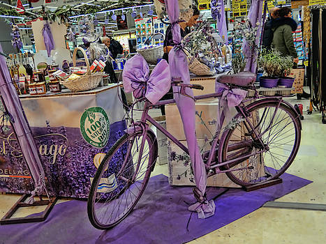 Lavender bike by Guido Strambio