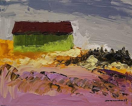 Lavender Farm by John Williams