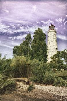 Lavender Lighthouse by Karl Anderson