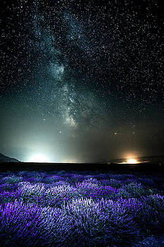 Lavender Milky Way by Bryan Carter