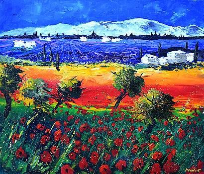 Lavender poppies Provence by Pol Ledent