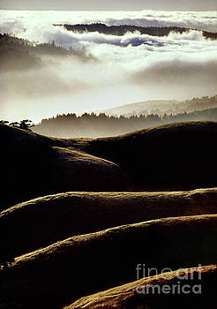 Layers of Hills and Fog on Mt. Tamalpais, California by Wernher Krutein
