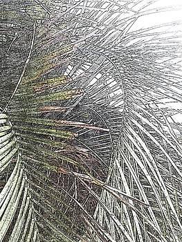 Leaves 545 by Lan Kwon