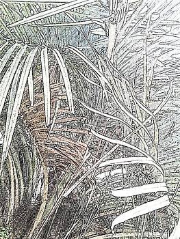 Leaves 546 by Lan Kwon