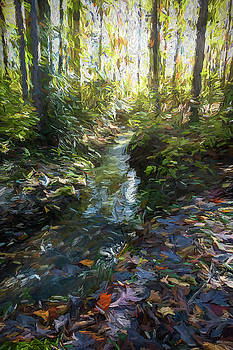 Leaves Along A Stream by Robert Meyerson