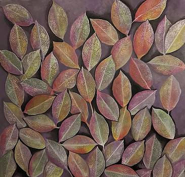 Leaves by Hila Abada