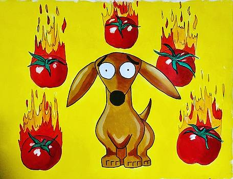 Leo and the Red Hot Tomatoes by Rhondda Saunders