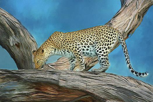 Leopard Against Blue Sky by Kay Kochenderfer