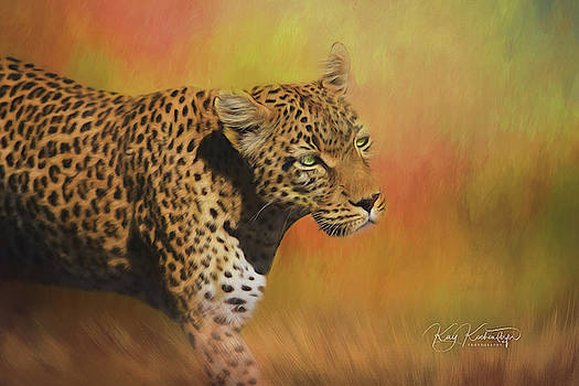 Leopard on the Prowl 5.0 by Kay Kochenderfer