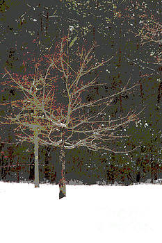 Let It Snow by Sharon Mayhak