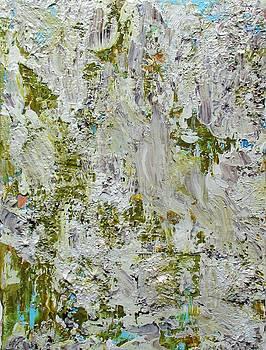 Lichen by Angela Grey