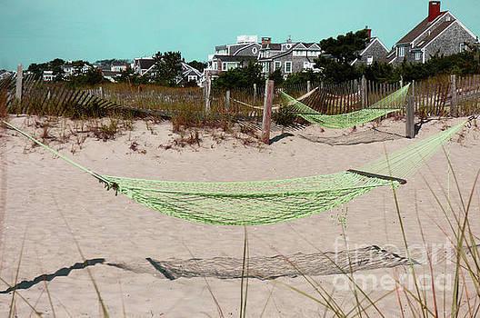 Sharon Williams Eng - Life at the Beach 300