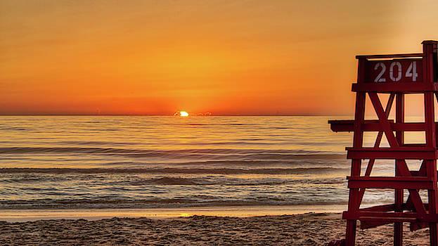Lifeguard Sunrose by Dillon Kalkhurst