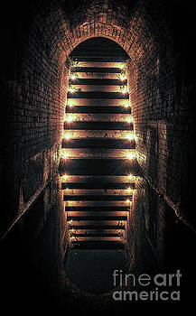 Light at the end of the tunnel by Scott Thorp