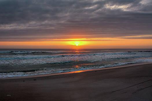 Light of the Sun by John M Bailey