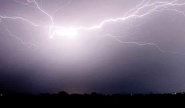 Lightning by Cyndi Hardy