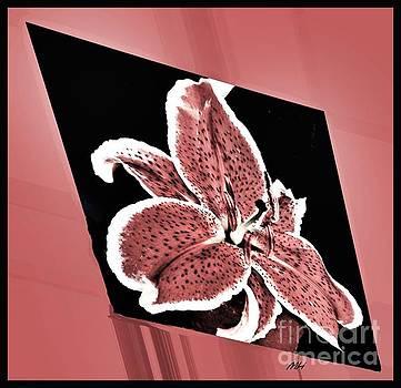 Lilies Diamond by Marsha Heiken