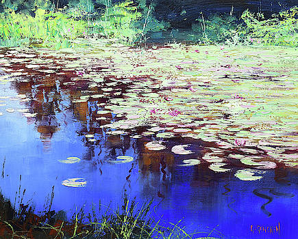 Lilies on blue water by Graham Gercken