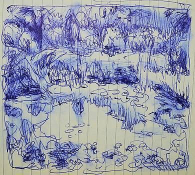 Lily Pond by Aletha Kuschan