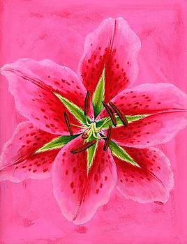 Lily Wall Art by Brian James