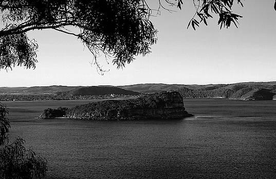 Lion Island In Black And White by Miroslava Jurcik