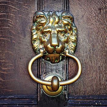 Lion Knocker by Joe Winkler
