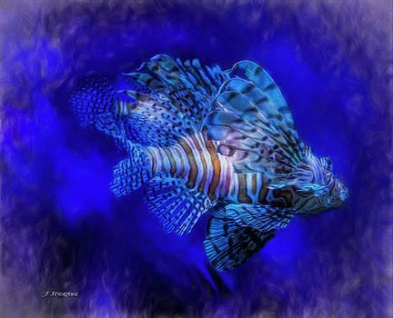Lionfish - Pterois Volitans  by Jennifer Stackpole