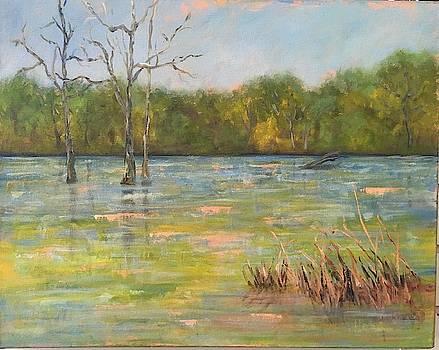 Lion's Den Marsh 3 by Marcia Hero