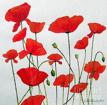 Litter of Poppies by Jackie Mueller-Jones