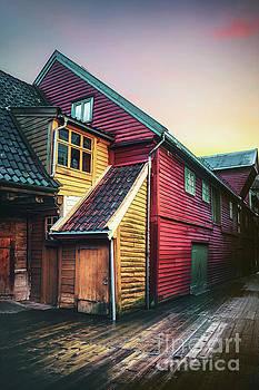 Little Dash Of Bergen by Evelina Kremsdorf