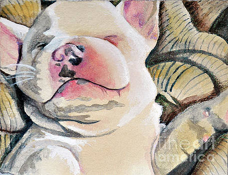 Little Frenchie by Lori Moon