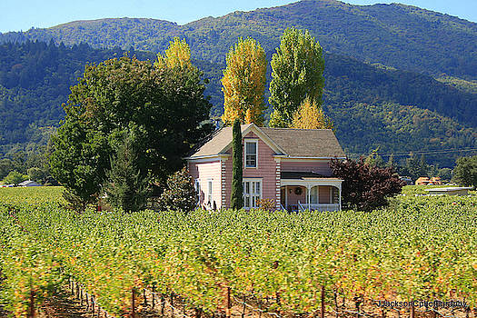 Little House in the Vineyard by Jonathan Jackson Coe