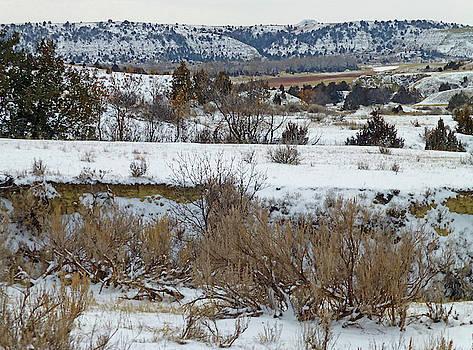 Little Missouri Winter by Cris Fulton