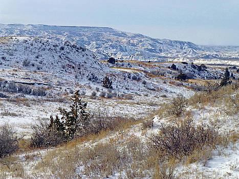 Little Missouri Winter Prairie by Cris Fulton