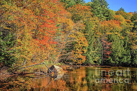 Little Pond Grafton New Hampshire by Edward Fielding