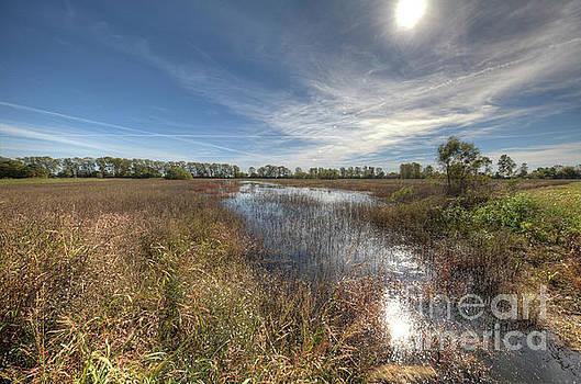 Larry Braun - LIttle River Conservation Area