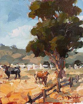 Livermore Pastures by Steven McDonald