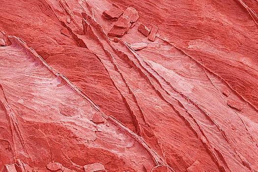 Living Coral Stone Background by Evgeniya Lystsova