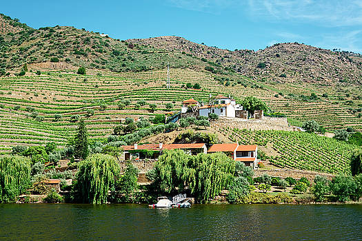Living on Douro River by Sally Weigand