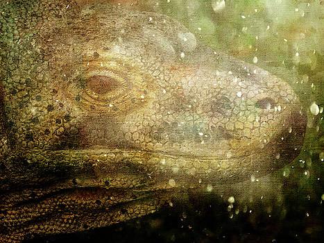 Lizard at Exmoor Zoo by Jay Lethbridge