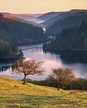 Llyn Brianne Sunrise by Elliott Coleman