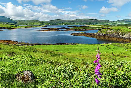 David Ross - Loch Dunvegan, Isle of Skye