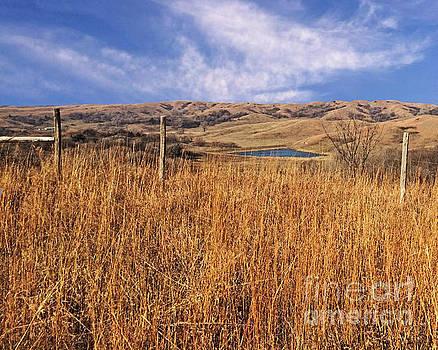 Loess Hills Loop by Kathy M Krause
