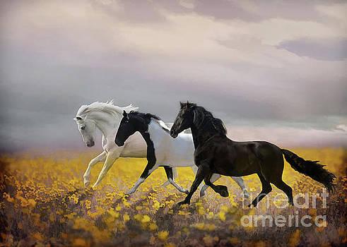 Logan's Run by Melinda Hughes-Berland