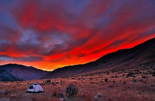 Lone Tent by Tom Gresham