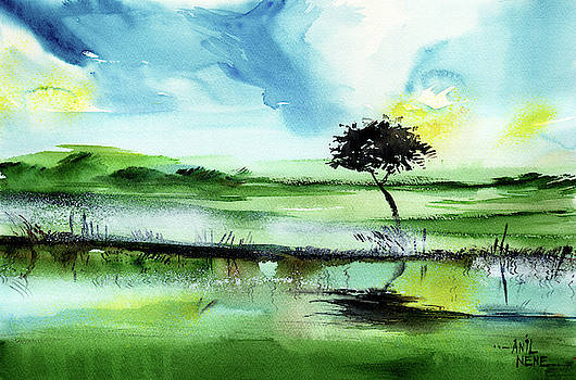 Lone Tree by Anil Nene